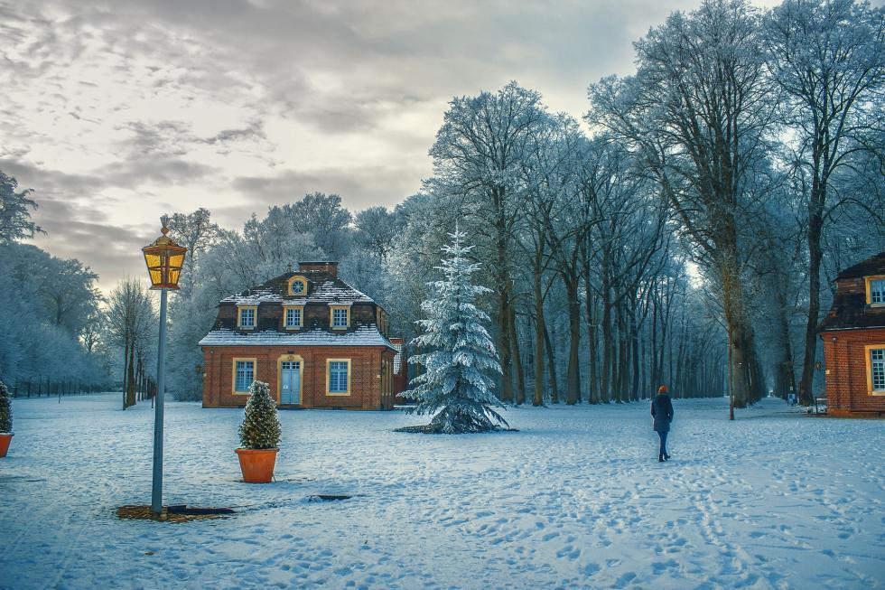 procházka v zimě